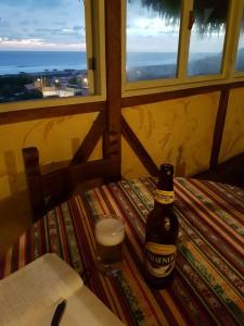 En cerveza och en bok till det är inte helt fel!
