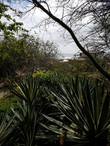 Azaluna eco-lodge